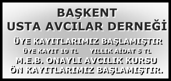 Ba�kent Usta Avc�lar Derne�i