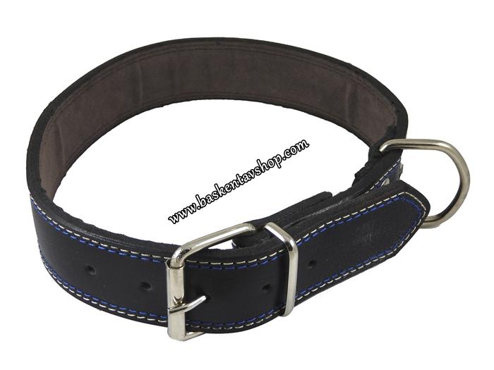 4 cm Vijital Yağlı Deri Köpek Tasması Siyah-av13813